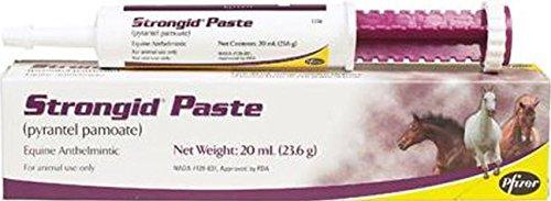 Anthelmintic Paste - DPD STRONGID Equine Anthelmintic Paste - 20 Milliliter