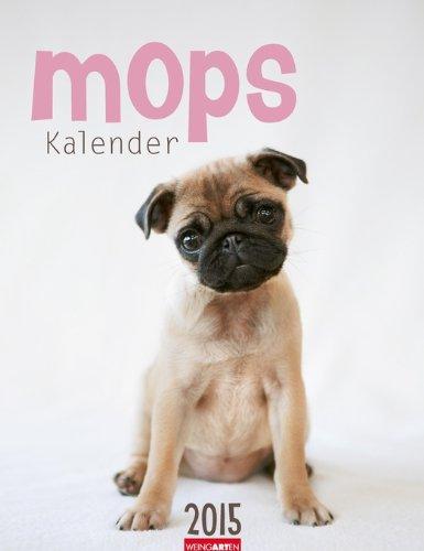 Mops Kalender 2015