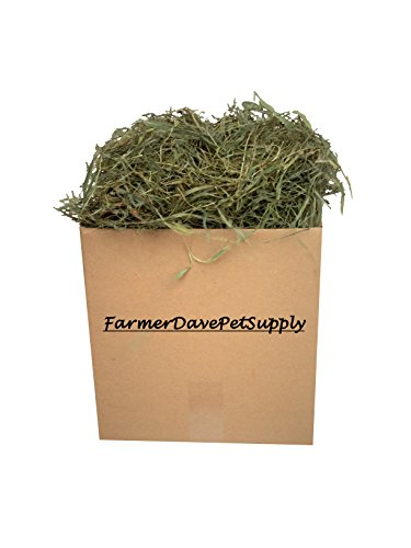3 Lb Second Cut Timothy Hay, Guinea Pig and Chinchilla Hay