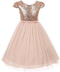 Girls Cap Sleeve Sequin Flower Girl Dress