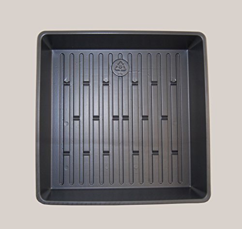Wheatgrass Growing Tray – 10 1/2″ X 10 1/12″ X 2 1/4″ Plant Seed Trays – No Holes – 25 Pack For Sale