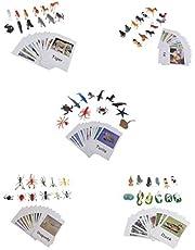 perfeclan 60x Miniatura Realista Montessori Animales Variados Juguetes Set para Niños con Tarjetas A Juego Preescolar Juguete De Aprendizaje Regalo Materiales D