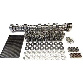 Amazon com: BRIAN TOOLEY BTR Turbo LS Stage 4 Cam, Spring Kit with