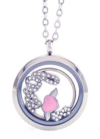 Stainless Steel Floating Locket Necklace with Choice of 6 Charms, 1 Plate, and Matching Chain (Silver No Stone Circle) by (Platinum No 1)