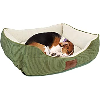 Amazon.com : American Kennel Club Casablanca Solid Round