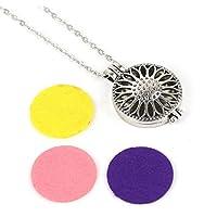 jindaratshop Retro Locket Necklace Fragrance Essential Oil Aromatherapy Diffuser Pendant Gift