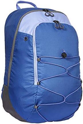 Amazon Basics Casual Sports Backpack