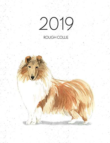 2019 Rough Collie: Dated Weekly Planner With To Do Notes & Dog Quotes - Rough Collie (Awesome Calendar Planners for Dog Owners)