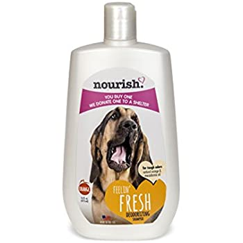 Nourish Fresh Deodorizing Dog Shampoo for Tough Odors, Natural Orange Scented 16 oz - You Buy 1, We Donate 1 to a Shelter, Made in USA, PH Balanced