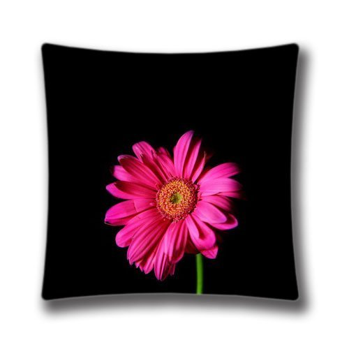 (Brecoy Flower Art C6310-Custom 18 x 18 Throw Pillow Cover Hot Pink Gerber Daisy Themed Zippered Decorative Pillowcase-Beautiful Decoration for)