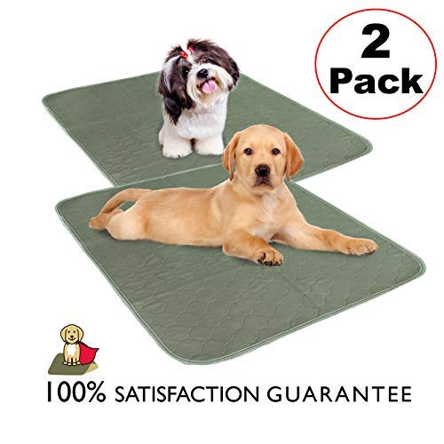 MILLIE MATS Washable Dog Training Pee Pads (2 Pack) Waterproof Bottom Layer to Protect Floors, Car, Keep Crate Easy to Clean. Used by Puppies, Incontinent Dogs, Senior Dogs