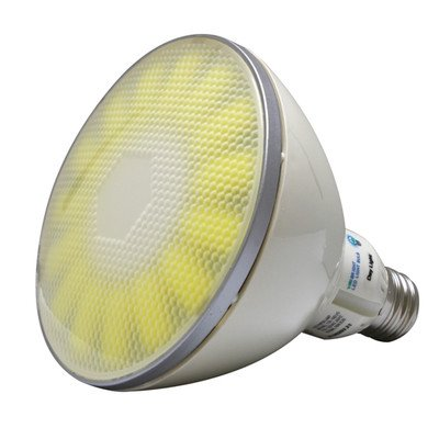 Nw Outdoor Lighting in US - 7