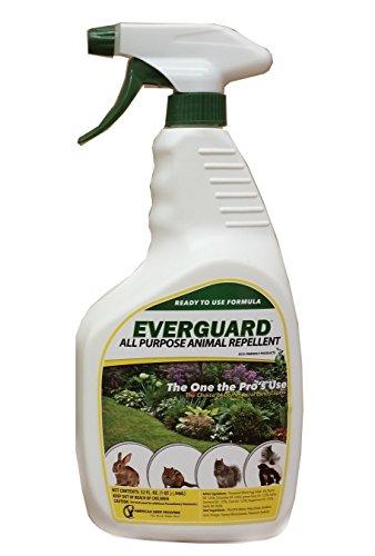 everguard-all-purpose-animal-repellent-32oz-rtu