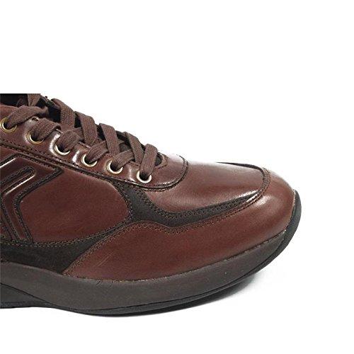 Scarpe Uomo Geox U Energy Walk B U13H1B 04322 C6006 - Colore - Marrone  (43)  Amazon.it  Scarpe e borse 6e4f63627d4
