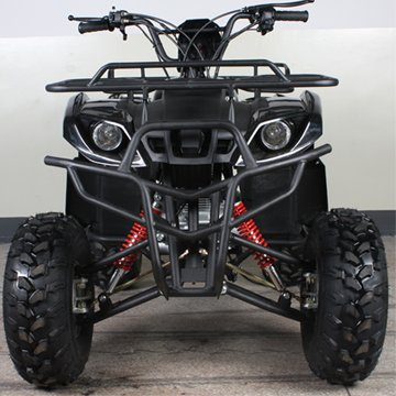 Full Size Atv 250cc 4 Gears with Reverse