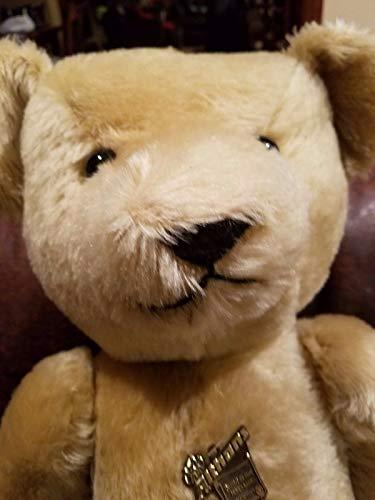 (Bear 26