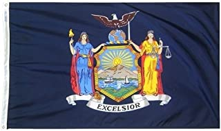 product image for All Star Flags 5x8' New York Nylon State Flag - All Weather, Durable, Outdoor Nylon Flag