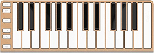 CME Xkey 25-Key MIDI Portable Mobile Musical Keyboard - Champagne by CME