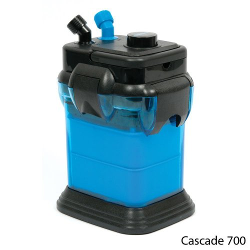 How to buy the best fish tank filters 55 gallon canister?