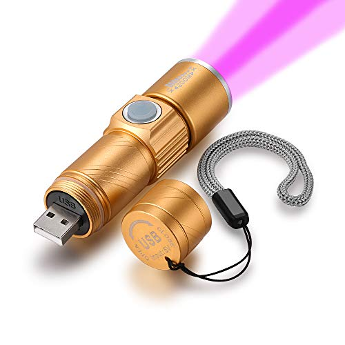 UV Blacklight Flashlights USB Rechargeable Portable Ultraviolet 395nm Led Flashlight Mini Handheld Torch Light Detector for Dog Urine, Pet Stains and Bed Bug (Gold)