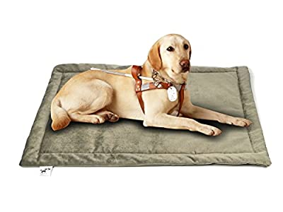 Comforhome Indoor and Outdoor Sleeping Dog Mat Soft Velvet Pad Anti-Slip Machine Washable Bed by Comforhome