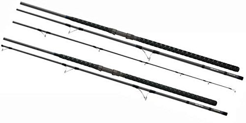 Daiwa Coastal Salt Pro CLSP1002MFS 10' Spinning Rod