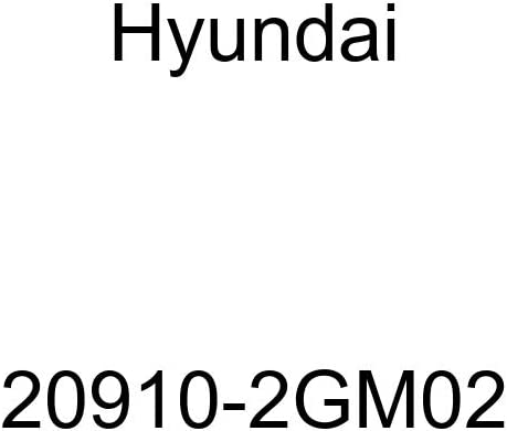 Genuine Hyundai 20910-2GM02 Engine Overhaul Gasket Kit