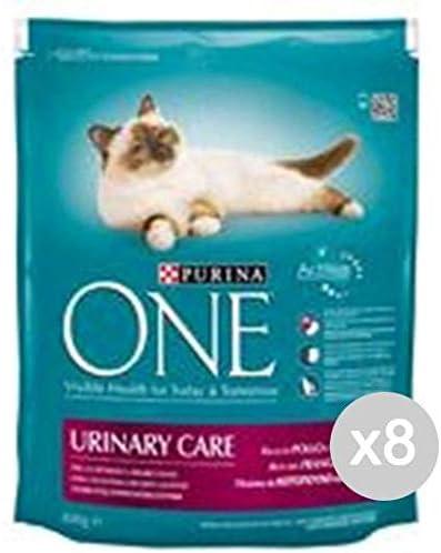 Purina Juego 8 One Gato Croccantini 800 Urinary Pollo Comida para Gatos: Amazon.es: Productos para mascotas