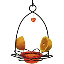 Bird's Choice Flower Oriole Bird Feeder Small Orange