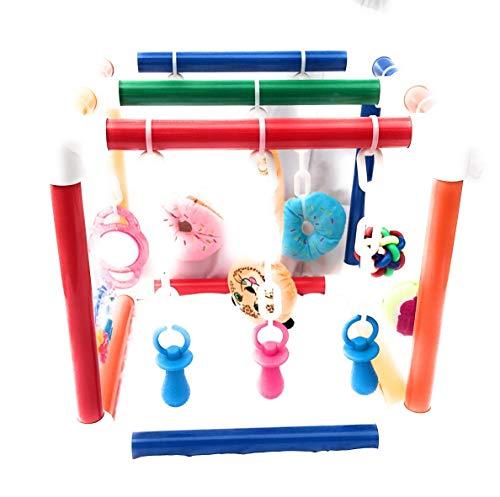 - Puppy Jungle Gym/Stimulation Station