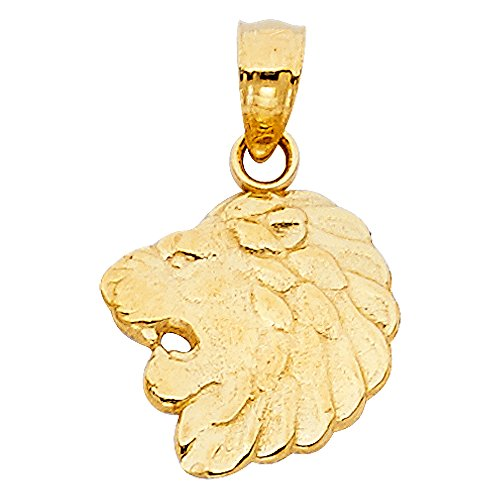 Solid 14k Yellow Gold Lion Head Pendant Leo Charm Zodiac Sign Polished Design Fancy 12 x 13 mm ()