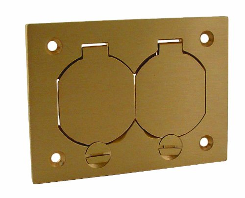 Hubbell-Raco 6250 1-Gang Rectangular Floor Box Duplex Brass Cover with Lift Lids