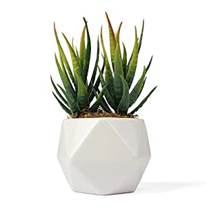 Bornbridge Artificial Succulent - Fake Succulent in Planter - Faux Succulent with Ceramic Geometric Planter - Aloe Succulent - Artificial Potted Plant (Single) 13