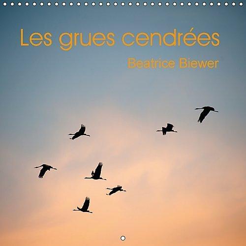 Les Grues Cendrees 2017: Le Vol Des Grands Migrateurs (Calvendo Animaux) (French Edition) by Calvendo Verlag GmbH