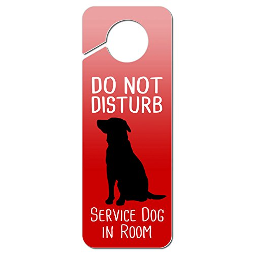 service dog in room - 9