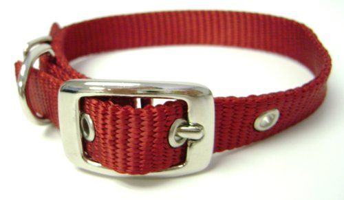 Image of Hamilton 5/8-Inch by 16-Inch Single Thick Nylon Deluxe Dog Collar, Red