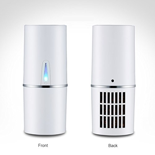 Car Air Purifier, Ionizer, Negative Ion Generator, Remove Smoke Odor, Dust, Allergen Eliminator, Active Carbon Filter, with USB Plug - How To Make A Pol