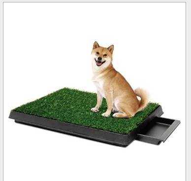 PAW Puppy Potty Trainer Indoor Restroom Large Dog Bed Pee Potty Trainer Litter Box for Pets