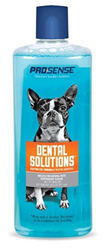 Pro-Sense Dental Water Additive Enzymatic Formula, 16-Fluid Ounces