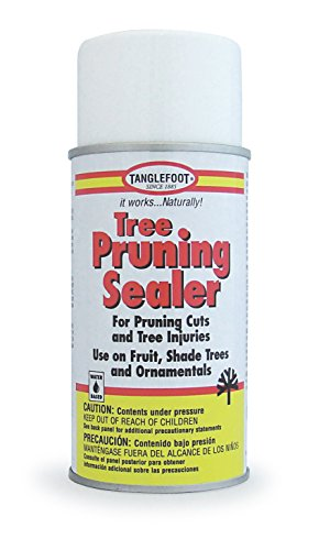 Tanglefoot Tree Pruning Sealer Aerosol 9 OZ ()