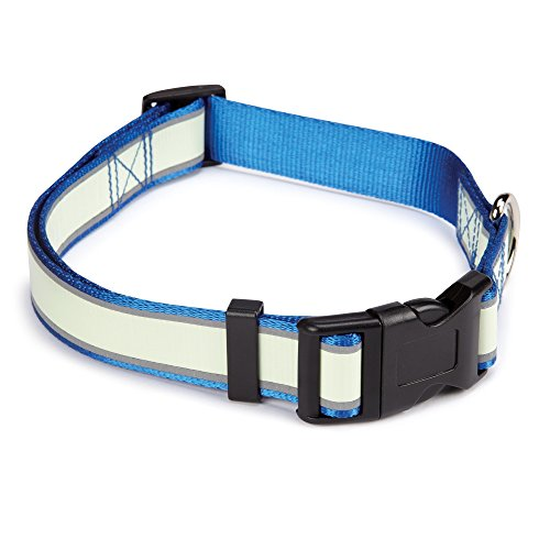 "Casual Canine Glow Nylon Dog Collar, Fits Necks 14"" to 20"", Blue"