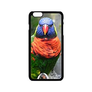 Cute Acutilingual Parrot Hight Quality Plastic Case for Iphone 6