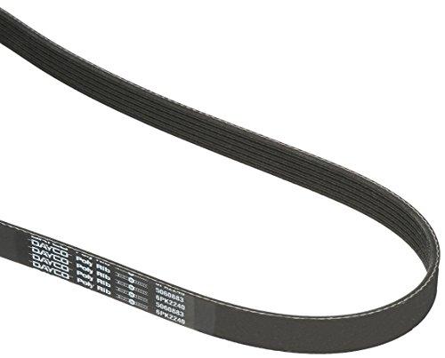 Top Serpentine Belts