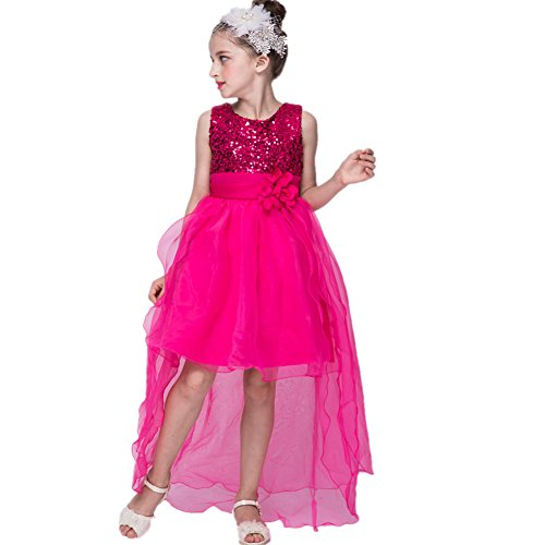 Azhido Kids Flower Sequins Occasion Tailing Dress Girls Pageant Size 6 to 12 (6, Pink)