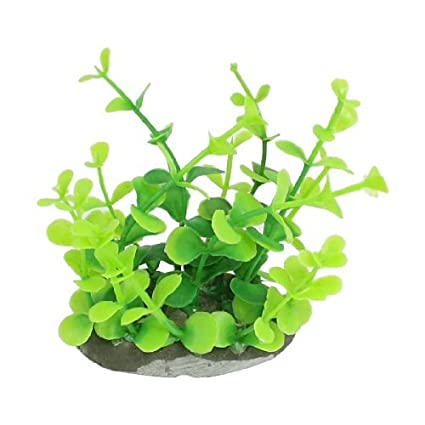 Amazon.com : eDealMax plástico decoración del acuario Planta Artificial, 9 cm, Verde : Pet Supplies