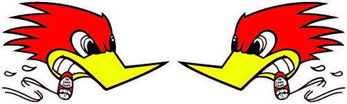 Hot Rod Decal (Hotrod Bird Right & Left Small Decal 4