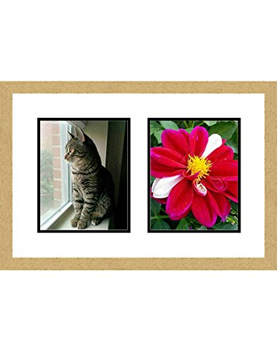 Amazon.com - Frames by Mail multimat-58693-aam0114 Double Square ...