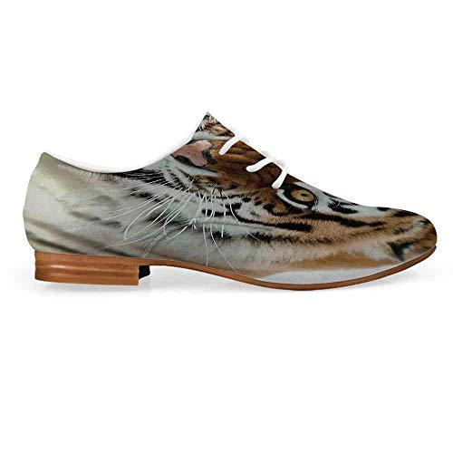 Safari Decor Leather Oxfords Lace Up Shoes,The Siberian Tiger Roar Teeth Golden Eyes Stripes Whiskers Attack Predator White Background Bootie for Girls ladis Womens,US 7 ()
