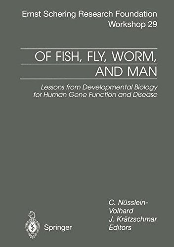 Of Fish Fly Worm And Man  Lessons From Developmental Biology For Human Gene Function And Disease  Ernst Schering Foundation Symposium Proceedings  29