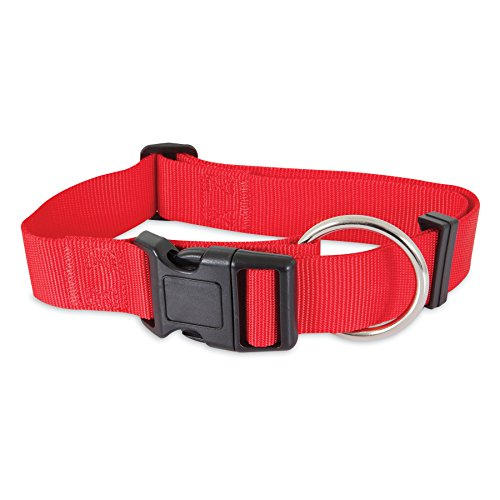 """Aspen Pet Products Nyl Adjustable Collar, 20-30"""" x 1.5"""", Red"""